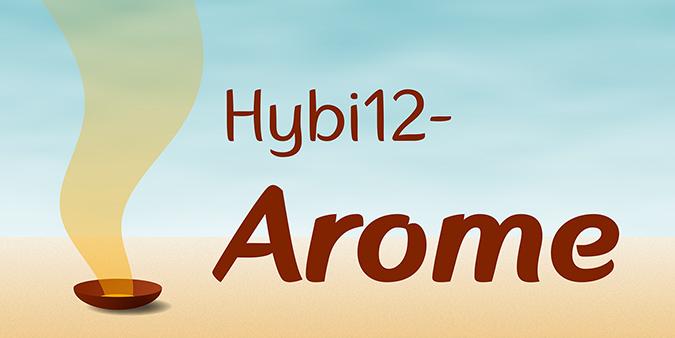 Hybi12-Arome-1-675